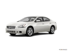 2013 Nissan Maxima 3.5 SV in Madison, Tennessee
